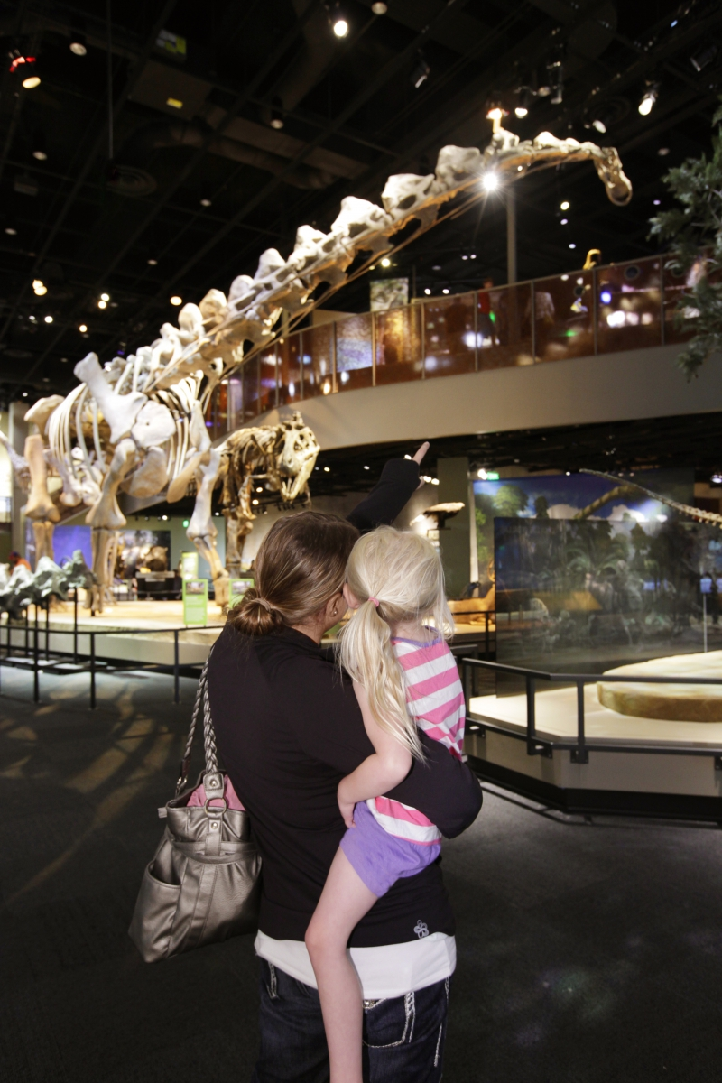 Museo Perot